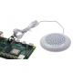 Raspberry pie speaker